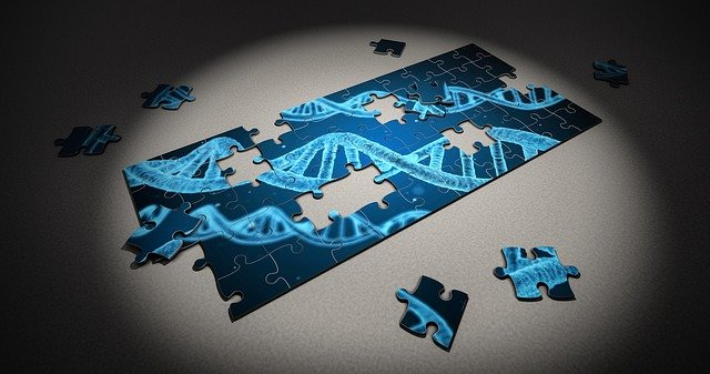 多种肌病的遗传特点