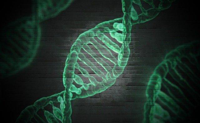 什么是遗传代谢病?